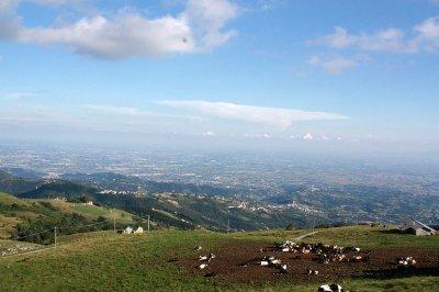 Panorama-dal-punto-vendita_W.thumb.jpg.58c8ed897b148fe245365f152e8846e7.jpg